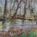 Buffalo Creek at the Koon's Trail, Pastel, 7 x 11 In