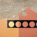 Blakelyn D Albright Crocus Sativus collage 7x5 inches