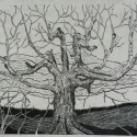 14 Gene Shaw Maple Tree on Quentin Road #3 woodcut 26.5 x 41.75 inches
