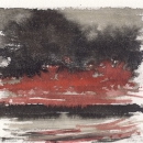 Western Blaze (ink on paper)