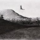 Michael Allen, Evening, 2020, charcoal on paper, 13 x 21 inches, $1,850