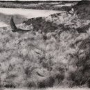 Michael Allen, Soaring, 2020, charcoal on paper, 14 x 18.5 inches, $1,850