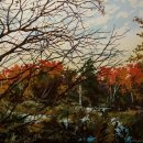 Robert-Bitts-Autumn-Wetlands-acrylic-on-canvas-15-x-32-inches