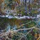 Robert Bitts Early Snow acrylic on canvas 36 x 63 inches 5500