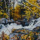 Robert Bitts Lower Falls acrylic on canvas 21 x 53 inches 3000