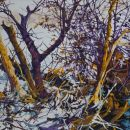Robert Bitts Small Stream Thicket acrylic on canvas 24 x 48 inches 3000