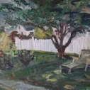 Back Yard  Oil on Linen  18 x 23.75 inches