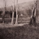 Michael Allen Study for Daylight Fading charcoal on paper 16 x 14 inches